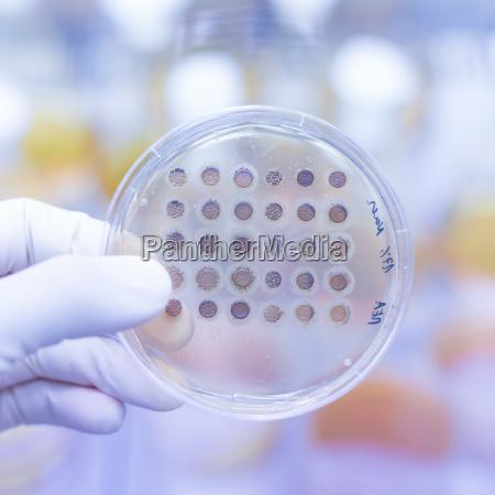 lukke sundhed medicinske medicinsk eksperiment videnskab