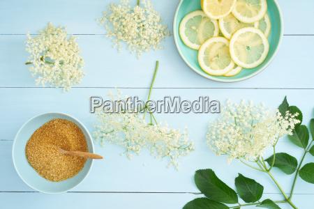 ingredienser til hyldeblomst sirup