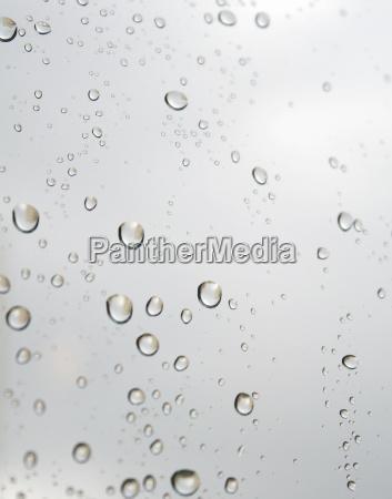 vindue tilbojelige regn drop drypper