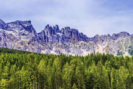 skov og bjerge
