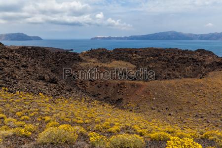 krater vegetation vulcan vulkan
