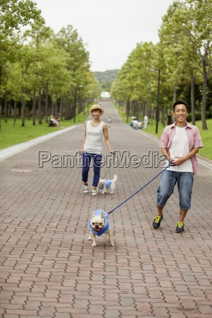 couple walking two dogs on a