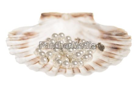 mode closeup close up smykker juveler