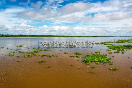 amazon flod udsigt