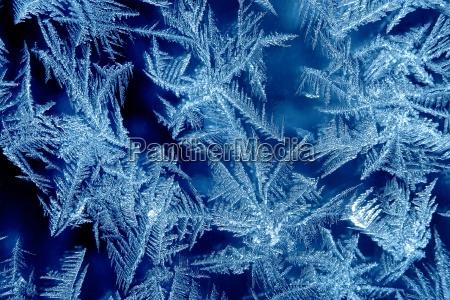 vinter vindue kold koldt frost frostvejr