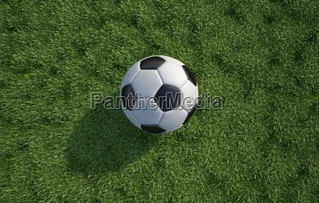 soccerfodbold bold taet op pa graes