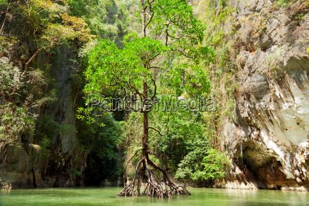 pang nga bay thailand pang nga