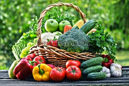 kurve med forskellige ra okologiske grontsager