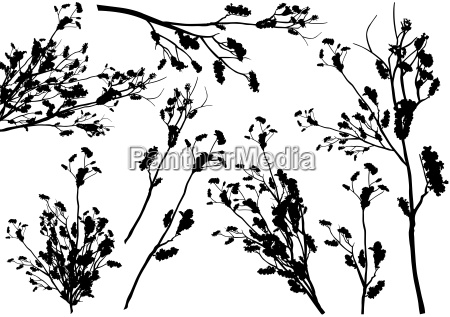 set, of, branch, silhouettes - 16575432