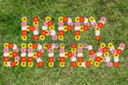 tillykke med fodselsdagen blomster fodselsdag blomst