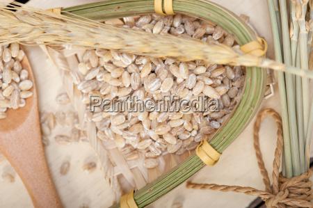 mad levnedsmiddel naeringsmiddel fodevare makrooptagelse naerbillede