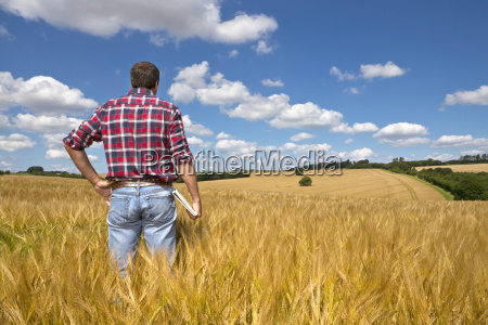 farmer looking out over sunny rural