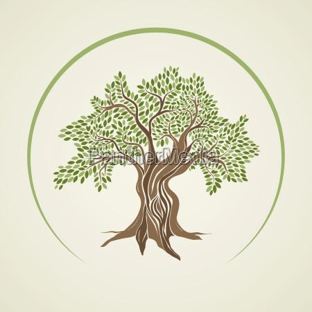 vektor illustration af oliventrae