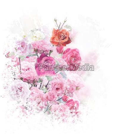 rosen blomster akvarel
