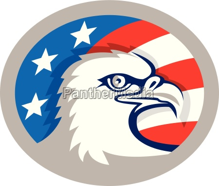bald eagle hoved usa flag oval