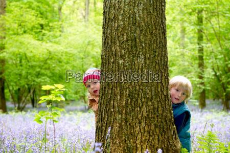 kids hiding behind a tree