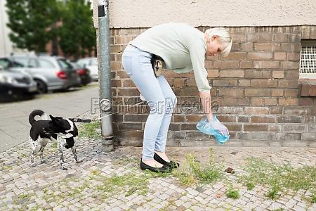 kvinde hund wc loo lugte lugt