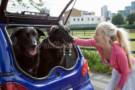 young woman patting dogs in electric
