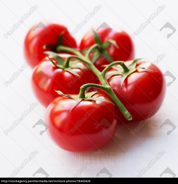 tomater, på, gren - 18443420