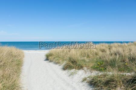 vej gennem sandet til stranden om
