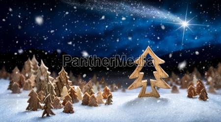 landskab af trae dekoration i sneen