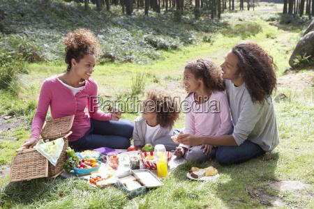 familie under picnic pa landet