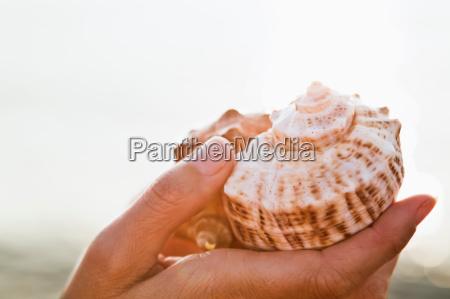 kvinde hand makrooptagelse naerbillede ferie sommer