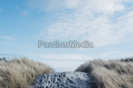 denmark hals dunes at the baltic