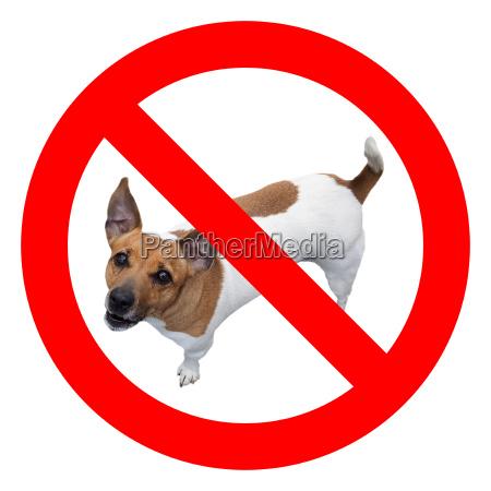 skilt signal hund hunde nej virkelige