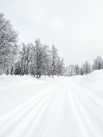 norway oppland snow covered cross country