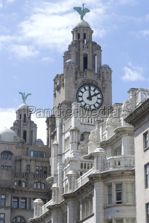 the liver building one of the