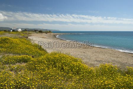 afsondret strand i foraret naer paphos