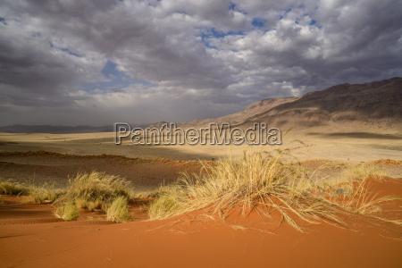 orken afrika namibia horisontal udendore udendors