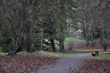 trae park blade tyskland den tyske