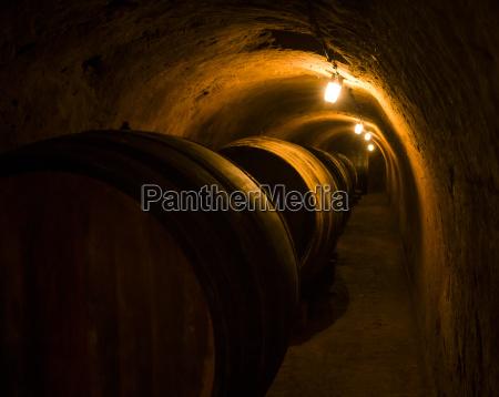 ostrig niederoesterreich vin kvartal straning vinkaelder