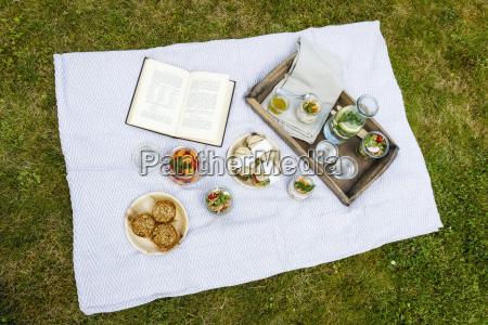 picnic med vegetariske snacks pa eng