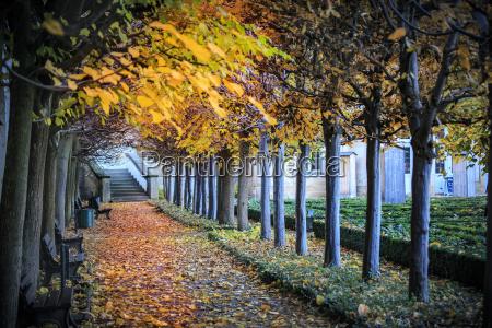 tyskland bamberg udsigt til efterars gangbro