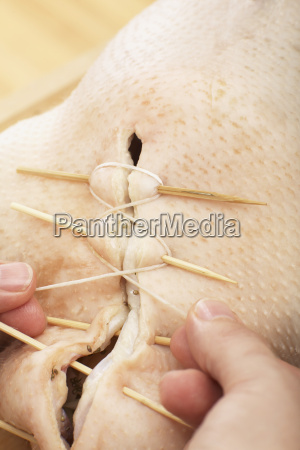 person stuffing raw goose close up