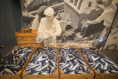 europa museu portugal fabrica sardinhas ponto