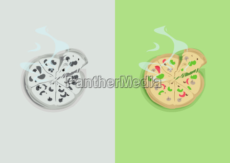 digital vector funny comic cartoon colored