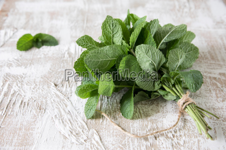 mint bunch of fresh green organic