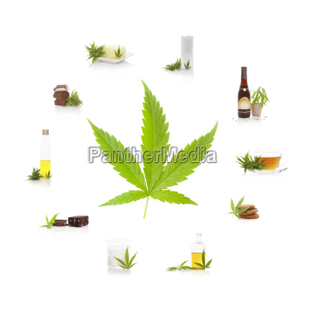 edible cannabis products