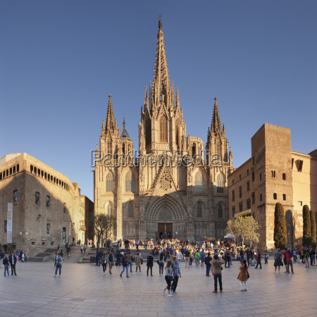 la catedral de la santa creu