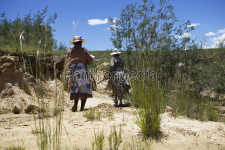 woman planting trees in a donga