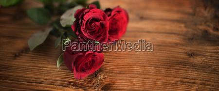 symbolske rode roser til valentins dag