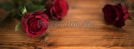 smukke rode roser til valentins dag