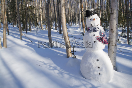 snowman in top hat scarf
