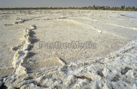 sebkha salt pan pa oasis bzemah