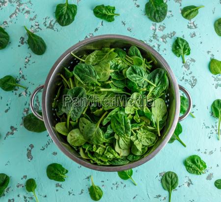 gron spinat blade i en jernkolander