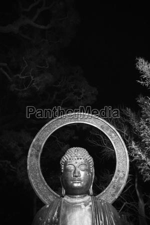 budda statue at night